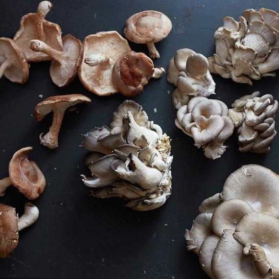 shitake-oyster-mushrooms-0116.jpg (skyword:217067)