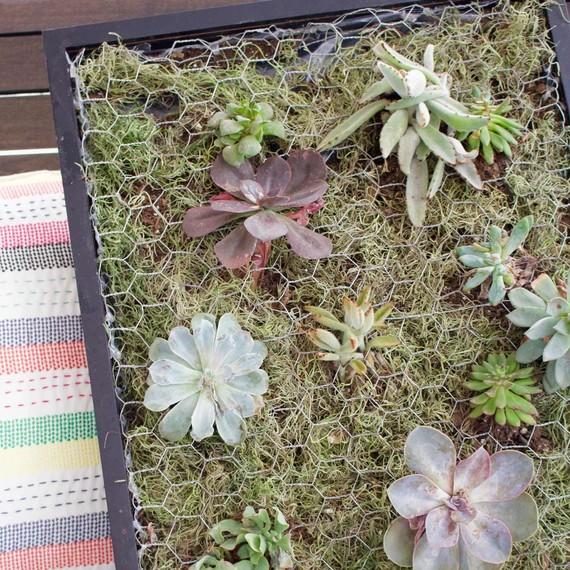 Vegetable Container Garden Planters