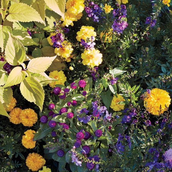 untermeyer-garden-068-d111583.jpg