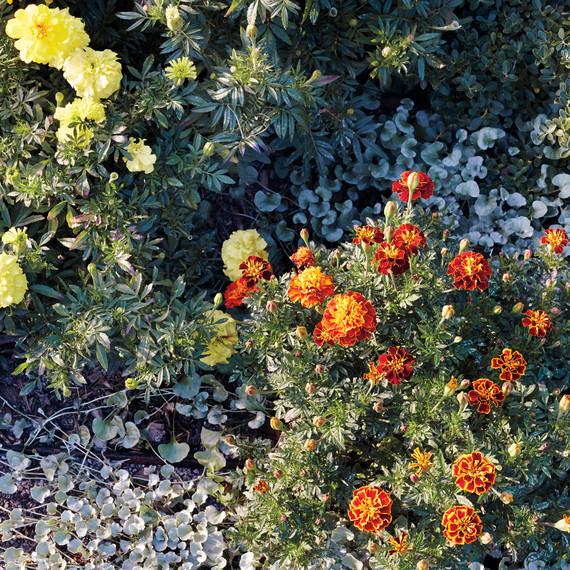 untermeyer-garden-071-d111583.jpg
