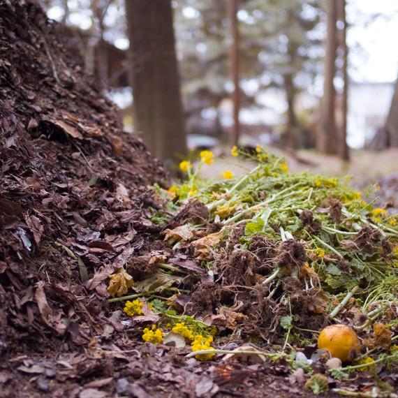 CERO-garden-compost-image-0617