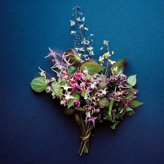 epimedium-flowers-md110227-56n.jpg