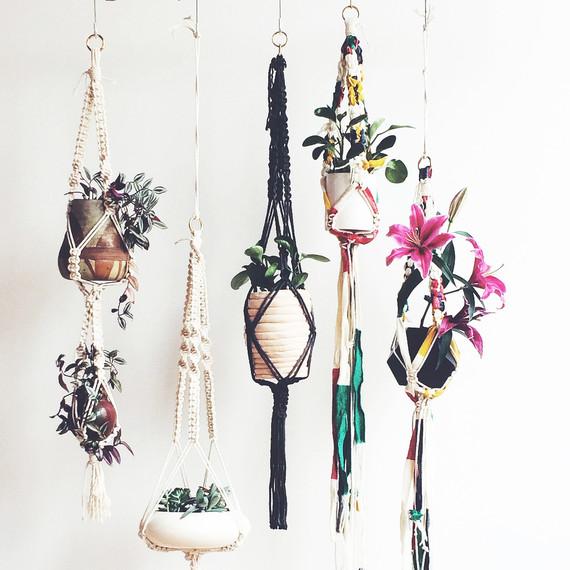 modern-macrame-5-plant-hangers.jpg