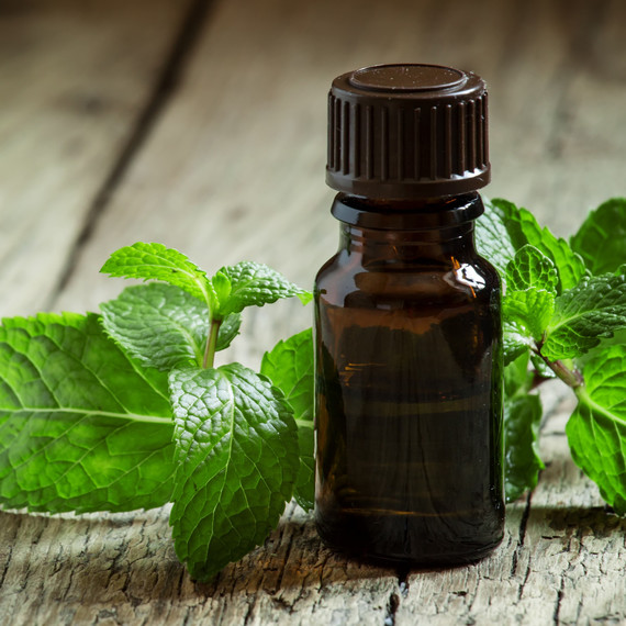 pepper mint oil leaves