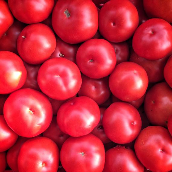 tomatoes ten mothers farm