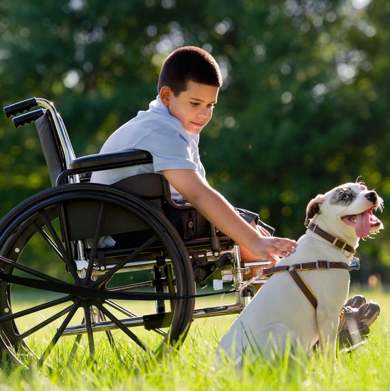 boy petting dog