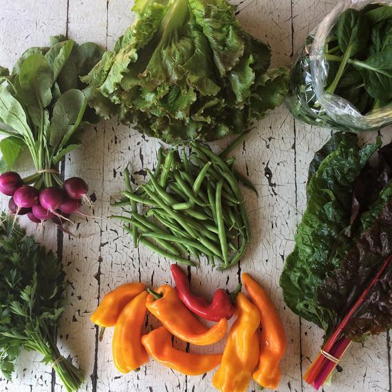 csa share ten mothers farm vegetables