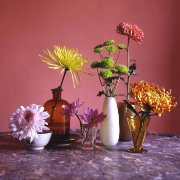 8 fall flower arrangements youre missing out on martha stewart fall flowers chrysanthemum 1014g mightylinksfo