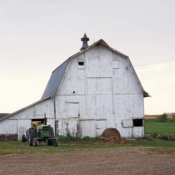pig-farm-iowa-06a6238-mld109360.jpg