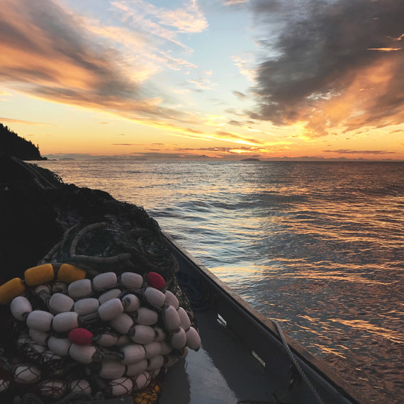 drifters fish net