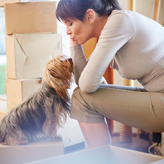 Woman and Dog sitting on Boxes