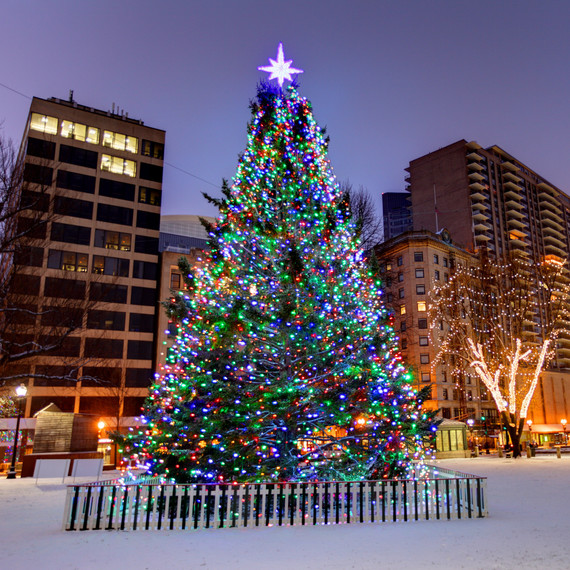 Boston's Christmas tree lit on Boston Common throughout the season.
