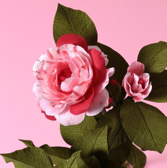 Jennifer trans 3 secrets to making magical paper flowers martha paper camellia by jennifer tran mightylinksfo