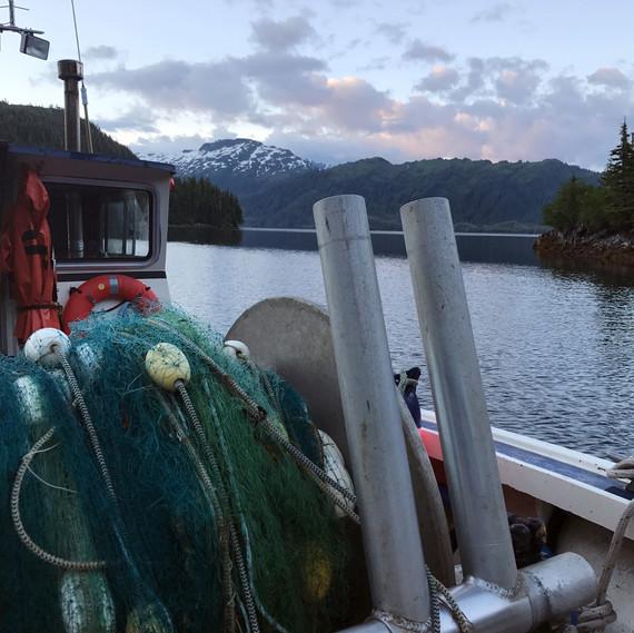 anchored night Drifters Fish 0717