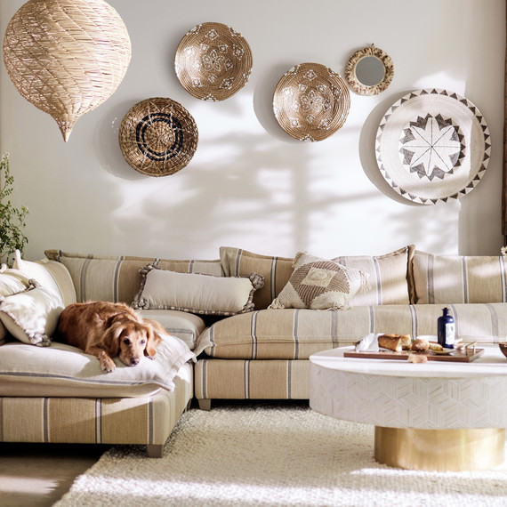 decorative baskets hanging on wall and dog laying on couch