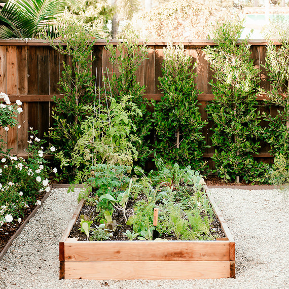 California House Vegetable Garden Bed