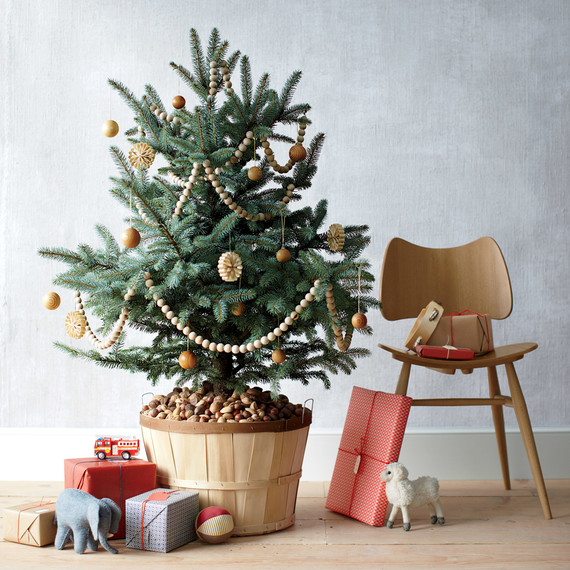 5 Tips to Keeping Your Christmas Tree Fresh Through December ...