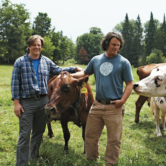 Andy and Mateo Kehler in fields with dairy cows
