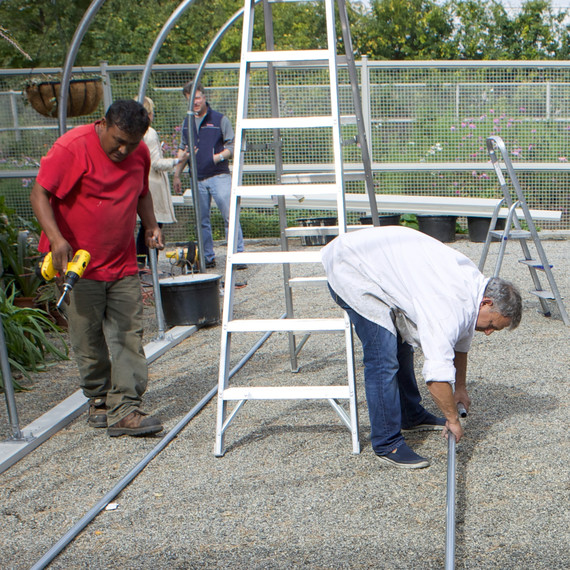 buildingnewgreenhouse-0417-fs-1014.jpg