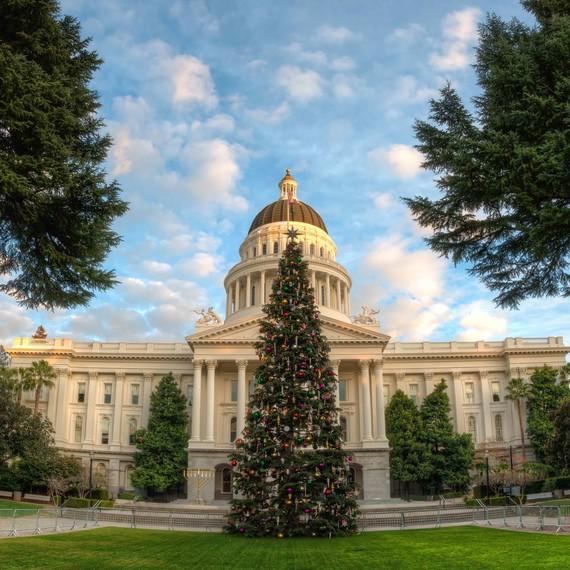 california capitol tree 2018