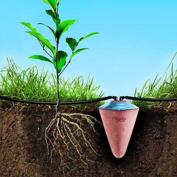 clayola plant watering system
