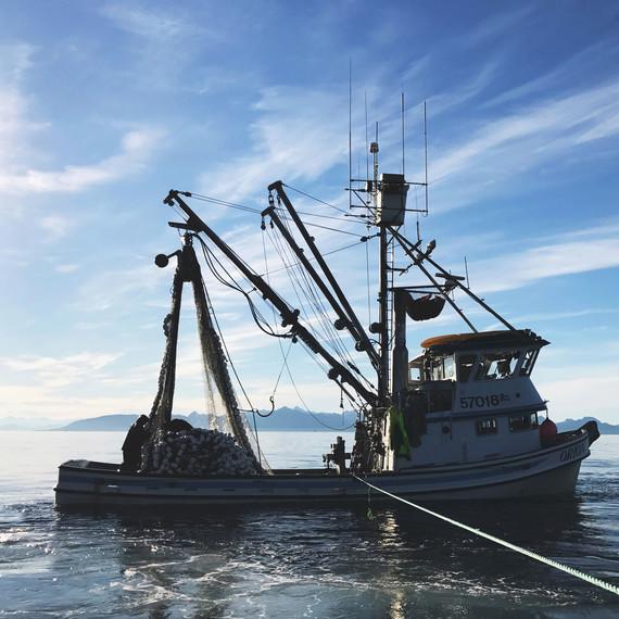 drifters fish boat
