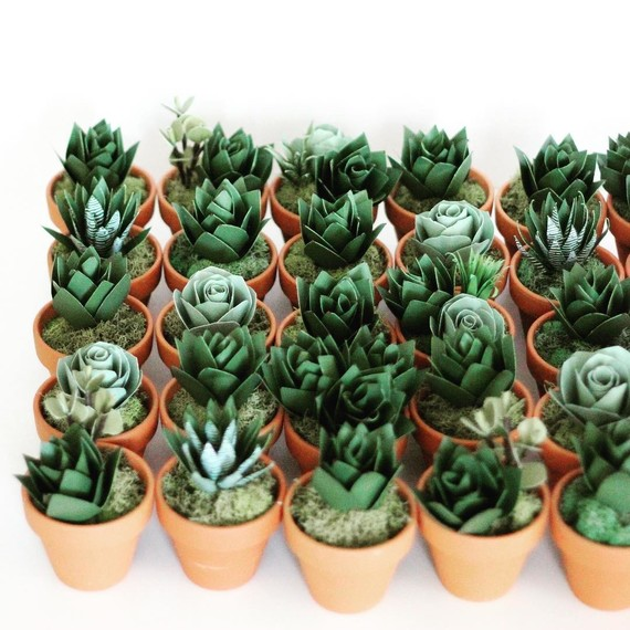 group-of-paper-succulents