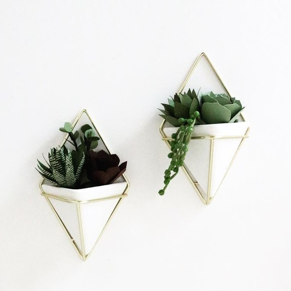 paper-succulents-hanging-wall