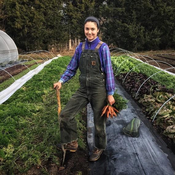 农夫拿着胡萝卜十个母亲的农场维拉