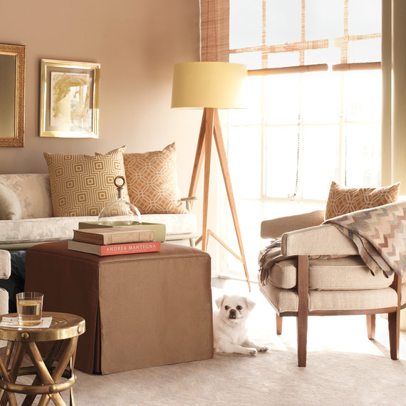 Creature Comforts Decorating With Pets In Mind Martha Stewart