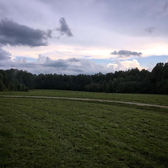 land mowed at dusk