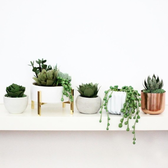 paper-succulents-on-shelf