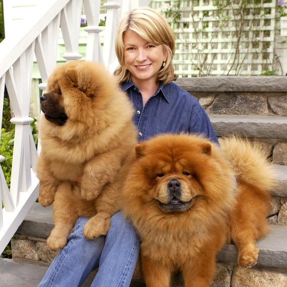 martha with chow chows