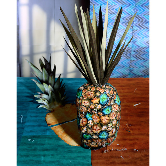 Daniel Gordon, Pineapple and Shadow, 2011; from Feast for the Eyes (Aperture, 2017)