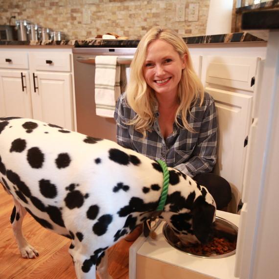 safe home pets dog bowl