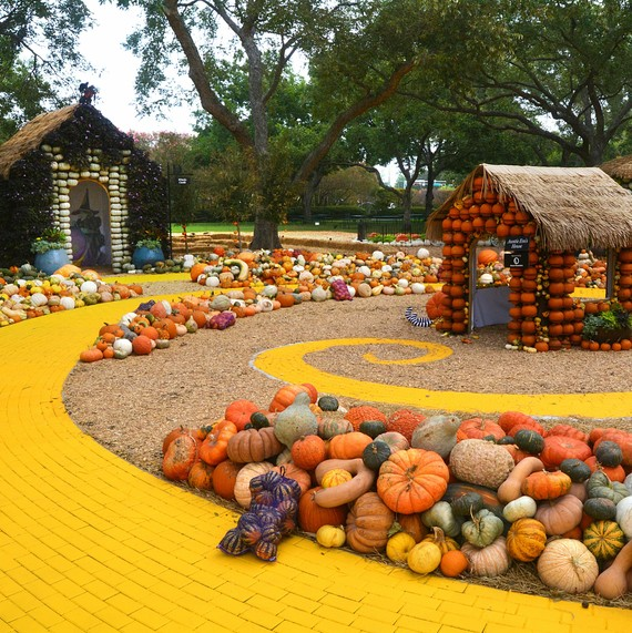 Dallas Arboretum and Botanical Garden pumpkins