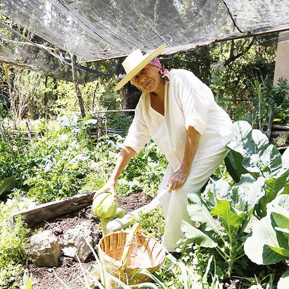 diana-kennedy-documentary-garden