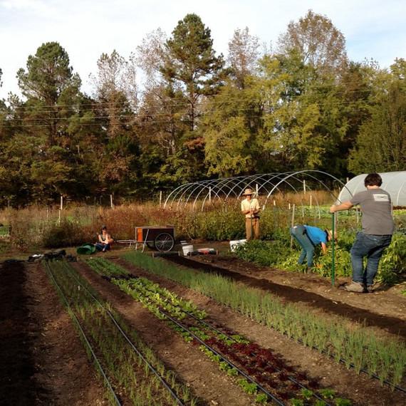 friends helping field ten mothers farm