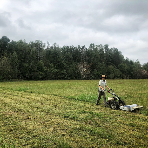 man mowing land to prep for planning