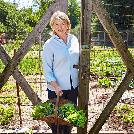 martha with a basket of lettuce garden gate