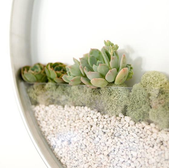 minimalistic wall planters