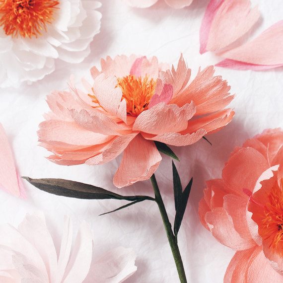A Paper Flower Artist Shares Her Secret To Magical Blooms Martha