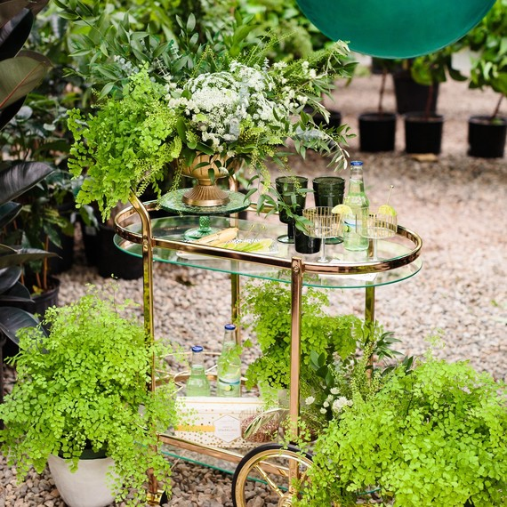 greenhouse party bar cart