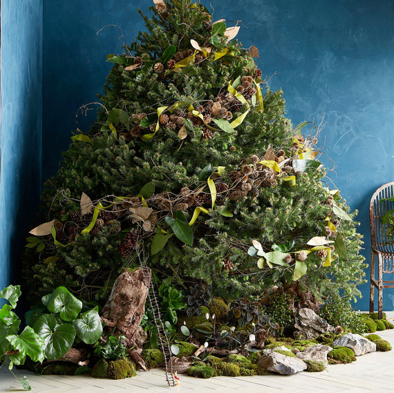 Proven or Debunked? Five Myths on Keeping Your Christmas Tree Alive