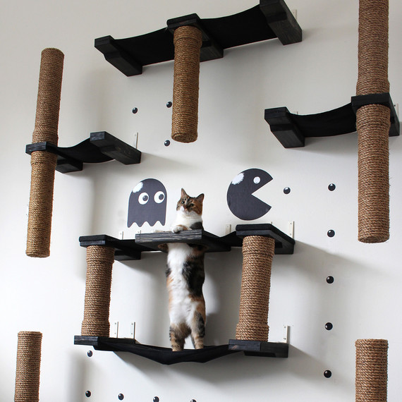 A PacMan inspired cat housing complex