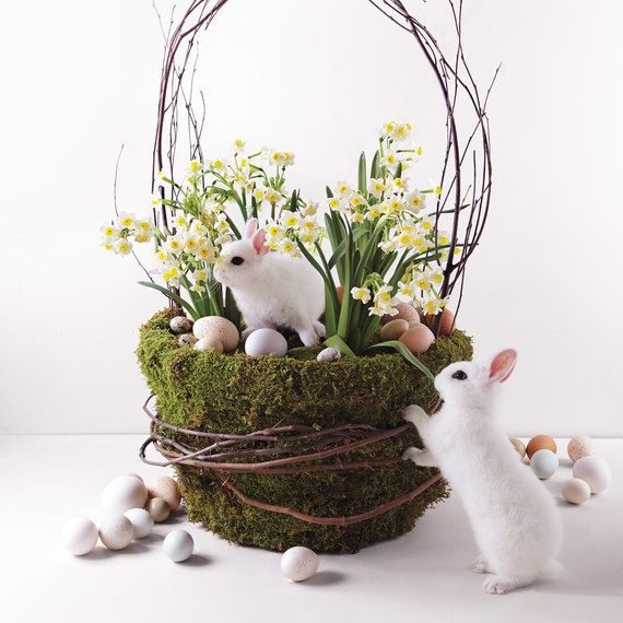 Plant a Basket of Blooms
