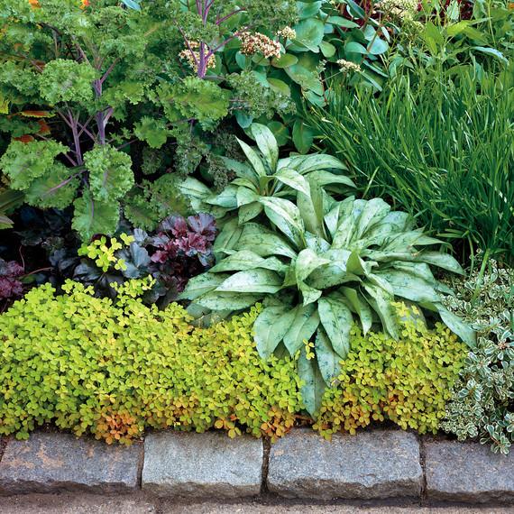 tangletown-gardens-minnesota-075-d111526.jpg