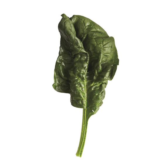 glossary-greens-0121-d112652-0216-spinach.jpg