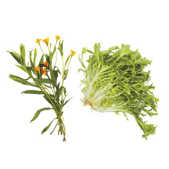 lettuce-pairings-tarragon-frisee-md110971.jpg