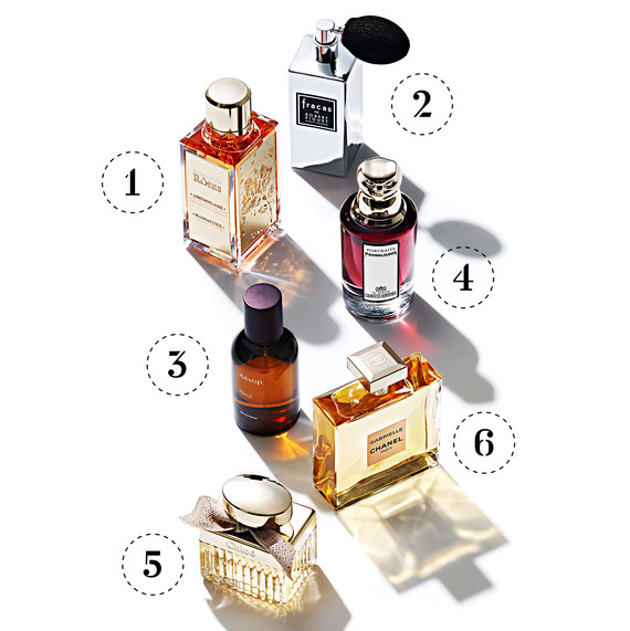 season highlights perfumes